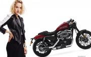 2016 Harley-Davidson Roadster