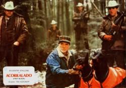 Рэмбо: Первая кровь / First Blood (Сильвестр Сталлоне, 1982) A1098a479820341