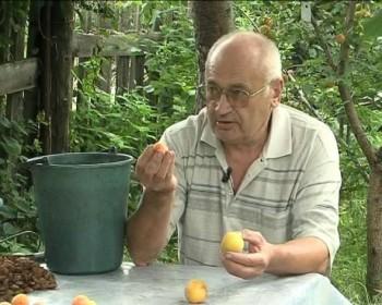 Альтернативный метод садоводства (2012) Видеокурс