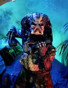 Хищник / Predator (Арнольд Шварценеггер / Arnold Schwarzenegger, 1987) 3f9126482420604