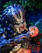 Хищник / Predator (Арнольд Шварценеггер / Arnold Schwarzenegger, 1987) 638496482420463