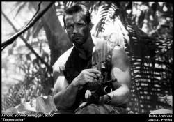Хищник / Predator (Арнольд Шварценеггер / Arnold Schwarzenegger, 1987) 426488484424415
