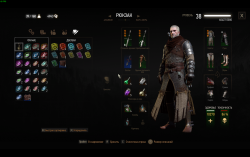 Gained 29 levels overnight without playing | Forums - CD PROJEKT RED
