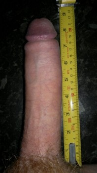 torbe penis size