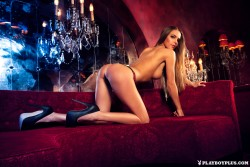 http://thumbnails116.imagebam.com/49147/57711b491467183.jpg