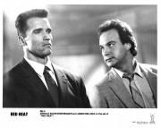 Красная жара / Red Heat (Арнольд Шварценеггер, Джеймс Белуши, 1988) - Страница 2 59a100494181815