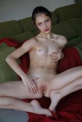 http://thumbnails116.imagebam.com/49433/8651fd494329405.jpg