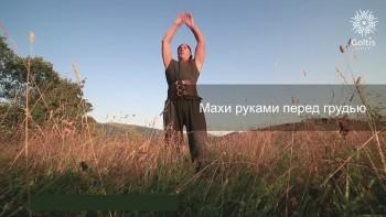 Голтис. Исцеляющий Импульс: Выжимка (2015) Видеокурс