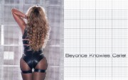 Beyonce : Very Sexy Wallpapers x 18