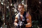 Хищник / Predator (Арнольд Шварценеггер / Arnold Schwarzenegger, 1987) 193ede497728382
