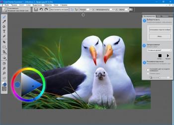 Corel Painter Essentials 5.0.0.1102 HF1 Multi/Eng+Rus