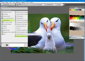 Corel Painter Essentials 5.0.0.1102 HF1 Multi/Eng+Rus