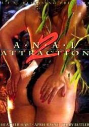 Anal Attractions 2 (1993)