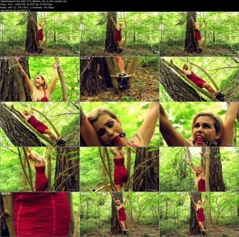 1amateurporn.net_bdd_013_altsiren_out_in_the_woods_hd