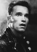 Терминатор 2 - Судный день / Terminator 2 Judgment Day (Арнольд Шварценеггер, Линда Хэмилтон, Эдвард Ферлонг, 1991) - Страница 2 079b81505113114