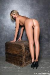 http://thumbnails116.imagebam.com/50518/e6c24b505173781.jpg