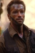 Хищник / Predator (Арнольд Шварценеггер / Arnold Schwarzenegger, 1987) Dd8214506384244