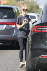 Amanda Seyfried - Going to The Dog House Groomer in LA 10/6/16