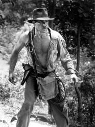Индиана Джонс и храм судьбы / Indiana Jones and the Temple of Doom (Харрисон Форд, Кейт Кэпшоу, 1984) 592bc3509894247