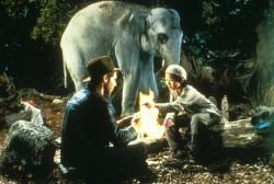 Индиана Джонс и храм судьбы / Indiana Jones and the Temple of Doom (Харрисон Форд, Кейт Кэпшоу, 1984) 6599c7509893730