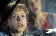 Парк Юрского периода / Jurassic Park (Сэм Нил, Джефф Голдблюм, Лора Дерн, 1993)  2e25b4510425409