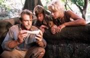 Парк Юрского периода / Jurassic Park (Сэм Нил, Джефф Голдблюм, Лора Дерн, 1993)  582fdc510425339