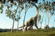 Парк Юрского периода / Jurassic Park (Сэм Нил, Джефф Голдблюм, Лора Дерн, 1993)  C81e99510426137