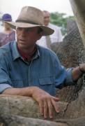Парк Юрского периода / Jurassic Park (Сэм Нил, Джефф Голдблюм, Лора Дерн, 1993)  Dbb165510425842