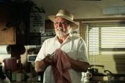 Парк Юрского периода / Jurassic Park (Сэм Нил, Джефф Голдблюм, Лора Дерн, 1993)  E1456c510425352