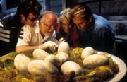 Парк Юрского периода / Jurassic Park (Сэм Нил, Джефф Голдблюм, Лора Дерн, 1993)  F6e24f510426116