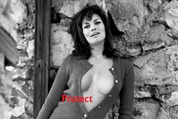 Raquel Welch: 'Revealing' B&W Pic: MQ x 1