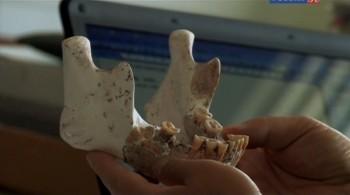 Загадочный предок из Каменного века / Enigma Man A Stone Age Mystery (2014) SATRip